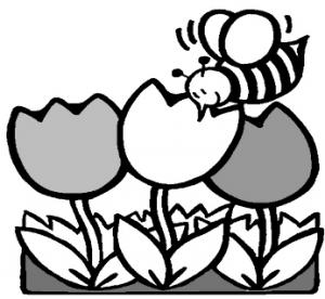 咲いているチューリップ三本に蜂がとまっているイラスト