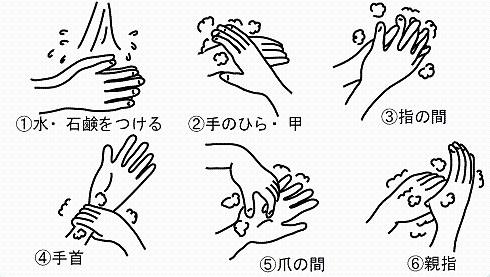 正しい手洗いの手順:①水・石鹸をつける②手のひら・甲を洗う③指の間を洗う④手首を洗う⑤爪の間を洗う⑥親指を洗う