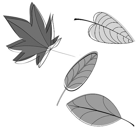 様々な落ち葉(紅葉など4枚)のイラスト